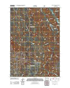Mount Fanny Oregon Historical topographic map, 1:24000 scale, 7.5 X 7.5 Minute, Year 2011