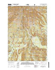 Mount Hood South Oregon Current topographic map, 1:24000 scale, 7.5 X 7.5 Minute, Year 2014 from Oregon Maps Store