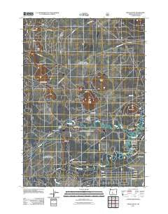 Pistol Butte Oregon Historical topographic map, 1:24000 scale, 7.5 X 7.5 Minute, Year 2011