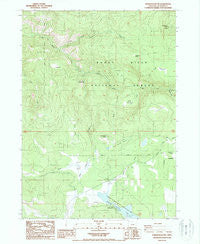 Robinson Butte Oregon Historical topographic map, 1:24000 scale, 7.5 X 7.5 Minute, Year 1988