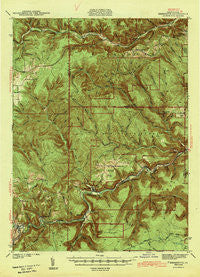Benezette Pennsylvania Historical topographic map, 1:62500 scale, 15 X 15 Minute, Year 1943