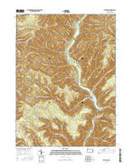 First Fork Pennsylvania Current topographic map, 1:24000 scale, 7.5 X 7.5 Minute, Year 2016 from Pennsylvania Map Store