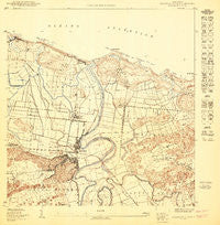 Barceloneta NE Puerto Rico Historical topographic map, 1:10000 scale, 3.75 X 3.75 Minute, Year 1950
