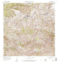 Corozal Puerto Rico Historical topographic map, 1:20000 scale, 7.5 X 7.5 Minute, Year 1972