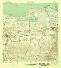 Manati Puerto Rico Historical topographic map, 1:30000 scale, 7.5 X 7.5 Minute, Year 1946