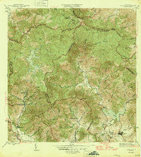 Patillas Puerto Rico Historical topographic map, 1:30000 scale, 7.5 X 7.5 Minute, Year 1946