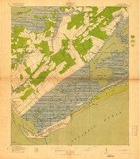 Fort Moultrie South Carolina Historical topographic map, 1:21120 scale, 7.5 X 7.5 Minute, Year 1919