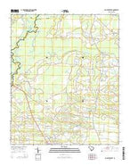 Galivants Ferry South Carolina Current topographic map, 1:24000 scale, 7.5 X 7.5 Minute, Year 2014 from South Carolina Map Store