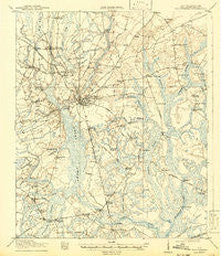 Walterboro South Carolina Historical topographic map, 1:62500 scale, 15 X 15 Minute, Year 1918