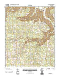 Altamont Tennessee Historical topographic map, 1:24000 scale, 7.5 X 7.5 Minute, Year 2013
