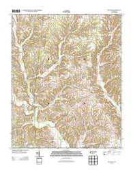 Appleton Tennessee Historical topographic map, 1:24000 scale, 7.5 X 7.5 Minute, Year 2013
