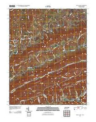 Back Valley Tennessee Historical topographic map, 1:24000 scale, 7.5 X 7.5 Minute, Year 2011