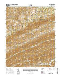 Back Valley Tennessee Current topographic map, 1:24000 scale, 7.5 X 7.5 Minute, Year 2016
