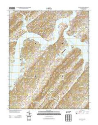 Bacon Gap Tennessee Historical topographic map, 1:24000 scale, 7.5 X 7.5 Minute, Year 2013
