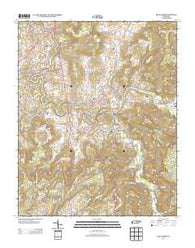Bald Knob Tennessee Historical topographic map, 1:24000 scale, 7.5 X 7.5 Minute, Year 2013