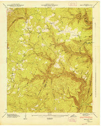 Brayton Tennessee Historical topographic map, 1:24000 scale, 7.5 X 7.5 Minute, Year 1947