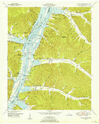 Daniels Landing Tennessee Historical topographic map, 1:24000 scale, 7.5 X 7.5 Minute, Year 1949
