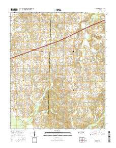 Denmark Tennessee Current topographic map, 1:24000 scale, 7.5 X 7.5 Minute, Year 2016