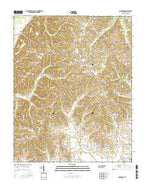 Hornbeak Tennessee Current topographic map, 1:24000 scale, 7.5 X 7.5 Minute, Year 2016 from Tennessee Map Store