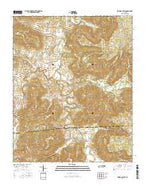 Irving College Tennessee Current topographic map, 1:24000 scale, 7.5 X 7.5 Minute, Year 2016 from Tennessee Map Store