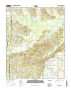 Milledgeville Tennessee Current topographic map, 1:24000 scale, 7.5 X 7.5 Minute, Year 2016 from Tennessee Map Store