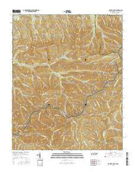 Mount Guyot Tennessee Current topographic map, 1:24000 scale, 7.5 X 7.5 Minute, Year 2016