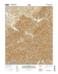 Richardson Cove Tennessee Current topographic map, 1:24000 scale, 7.5 X 7.5 Minute, Year 2016