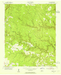 Stockton Tennessee Historical topographic map, 1:24000 scale, 7.5 X 7.5 Minute, Year 1954