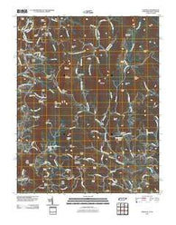 Zionville Tennessee Historical topographic map, 1:24000 scale, 7.5 X 7.5 Minute, Year 2010