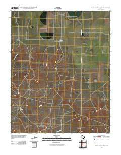 Bivins Channing Ranch Texas Historical topographic map, 1:24000 scale, 7.5 X 7.5 Minute, Year 2010
