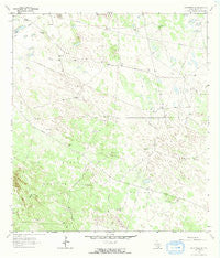 Falfurrias SE Texas Historical topographic map, 1:24000 scale, 7.5 X 7.5 Minute, Year 1963