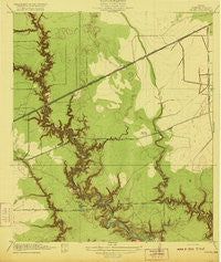 Fauna Texas Historical topographic map, 1:31680 scale, 7.5 X 7.5 Minute, Year 1920