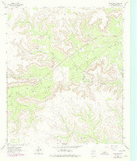 Glass Ranch Texas Historical topographic map, 1:24000 scale, 7.5 X 7.5 Minute, Year 1963