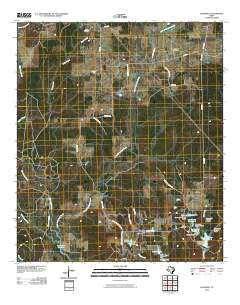 Glendale Texas Historical topographic map, 1:24000 scale, 7.5 X 7.5 Minute, Year 2010