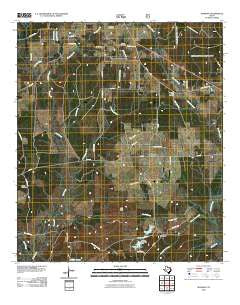 Manning Texas Historical topographic map, 1:24000 scale, 7.5 X 7.5 Minute, Year 2010