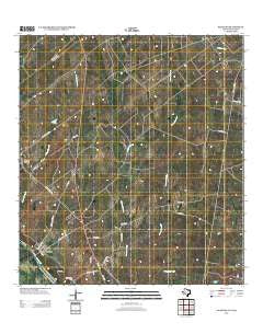 Salineno Texas Historical topographic map, 1:24000 scale, 7.5 X 7.5 Minute, Year 2012