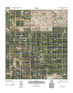 Seeligson Ranch Texas Historical topographic map, 1:24000 scale, 7.5 X 7.5 Minute, Year 2013
