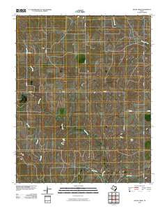 Skunk Creek Texas Historical topographic map, 1:24000 scale, 7.5 X 7.5 Minute, Year 2010