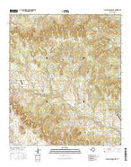 Walnut Springs East Texas Current topographic map, 1:24000 scale, 7.5 X 7.5 Minute, Year 2016 from Texas Map Store