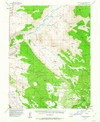 Castle Valley Utah Historical topographic map, 1:62500 scale, 15 X 15 Minute, Year 1954