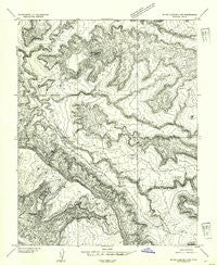 White Canyon 4 NW Utah Historical topographic map, 1:24000 scale, 7.5 X 7.5 Minute, Year 1954