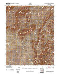 Yellow Rock Point West Utah Historical topographic map, 1:24000 scale, 7.5 X 7.5 Minute, Year 2010