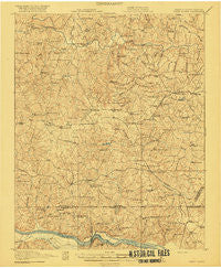 White Plains Virginia Historical topographic map, 1:62500 scale, 15 X 15 Minute, Year 1920