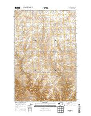 Alstown Washington Current topographic map, 1:24000 scale, 7.5 X 7.5 Minute, Year 2014 from Washington Maps Store