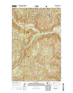 Bald Knob Washington Current topographic map, 1:24000 scale, 7.5 X 7.5 Minute, Year 2014 from Washington Map Store