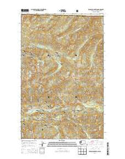 Bearpaw Mountain Washington Current topographic map, 1:24000 scale, 7.5 X 7.5 Minute, Year 2014 from Washington Maps Store