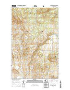 Burge Mountain Washington Current topographic map, 1:24000 scale, 7.5 X 7.5 Minute, Year 2014 from Washington Map Store