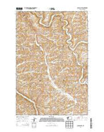 Colfax South Washington Current topographic map, 1:24000 scale, 7.5 X 7.5 Minute, Year 2013 from Washington Map Store