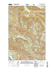 Cougar Mountain Washington Current topographic map, 1:24000 scale, 7.5 X 7.5 Minute, Year 2014 from Washington Maps Store