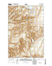 Coulee City Washington Current topographic map, 1:24000 scale, 7.5 X 7.5 Minute, Year 2014 from Washington Maps Store